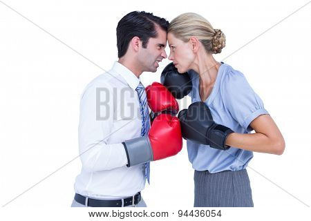 Business people wearing and boxing red gloves on white background