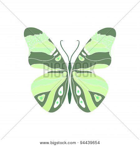 Green Butterfly.