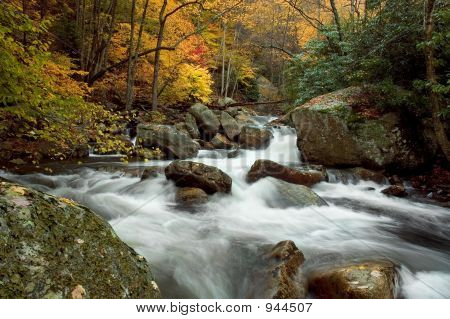 Autumn Forest Cascade