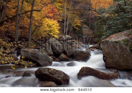 Herbst-Wald-Cascade