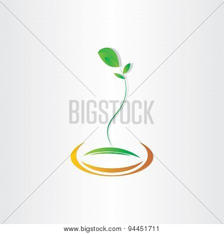 Plant Seed Germination Vector Design