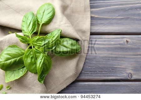 Green fresh basil with napkin on table close up