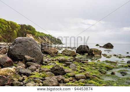 Foundlings On Shore Of The Baltic Sea