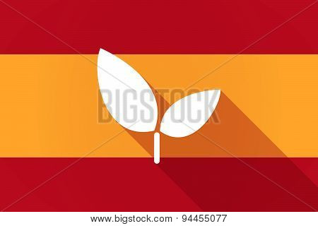 Spain  Long Shadow Flag With A Plant