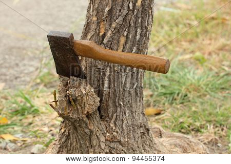 Axe on tree stump