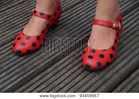 Spanish flamenco dance shoes - standing