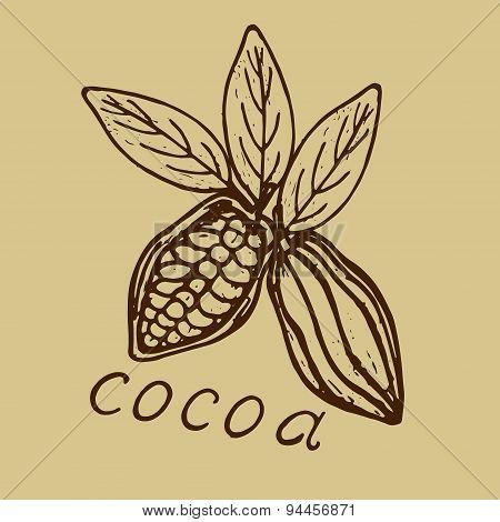 Logo Cocoa