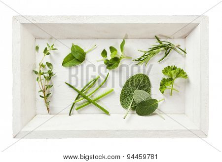 Variety of leaves from herbs on white wooden tray, top view, isolated
