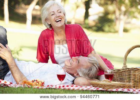 Senior Couple Enjoying Picnic Together