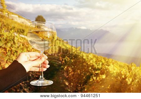 Wineglass in the hand against vineyards in Lavaux region, Switzerland