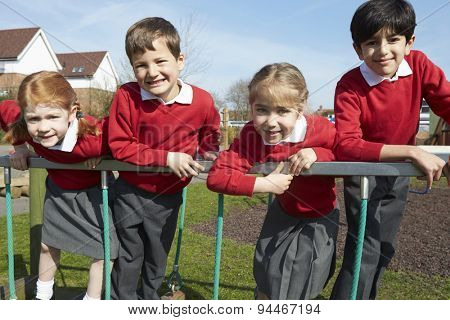 Portrait Of Elementary School Pupils On Climbing Equipment