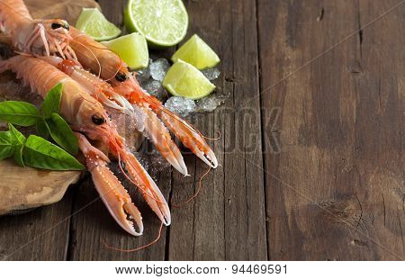 Raw Langoustine On Ice With Lime And Basil