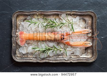 Raw Langoustine And Rosemary On Ice