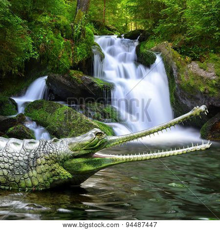 Gharial (also known as the gavial, and the fish-eating crocodile)