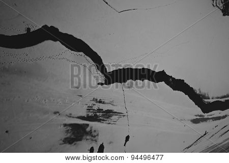 Cracked Ice On The River