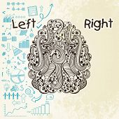 foto of right brain  - Creative illustration of a human brain showing left analytical part and blank right part - JPG