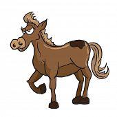 pic of brown horse  - brown horse cartoon illustration - JPG