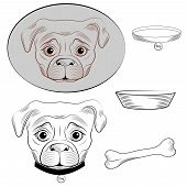 picture of pug  - Set of 2 variants of the head dog pug and dog accessories - JPG