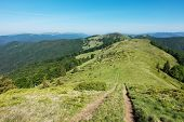 picture of blue ridge mountains  - Path through the amazing spring mountain ridge under blue sky  - JPG