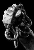 stock photo of gallows  - Male hand with rope on black background - JPG