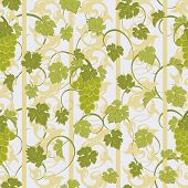 picture of cluster  - Vector repeating pattern with grape clusters in vintage style - JPG