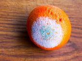 picture of rotten  - Orange fruit rotten on a colored background - JPG