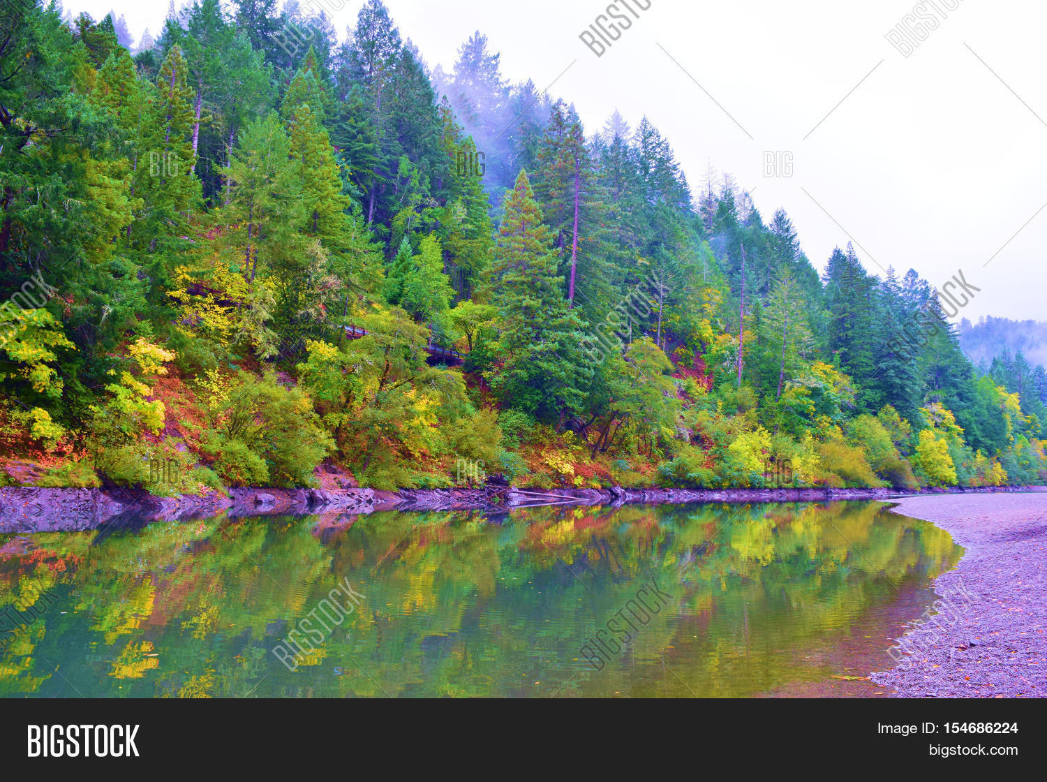 Deciduous Trees Changing Colors Image & Photo | Bigstock