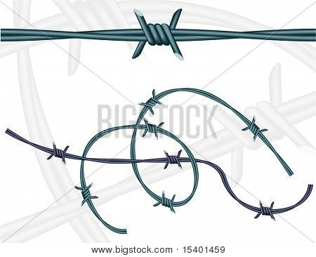Barbed wires. Vector. Pattern brush.