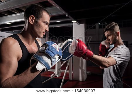 Totally focused. Side view of handsome concentrated trainer holding boxing pad while his opponent training on it.