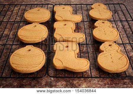closeup of christmas gingerbread cookies on rack