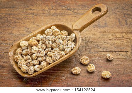 organic peeled tiger nuts, a rich source of resistant starch, wooden scoop against rustic wood