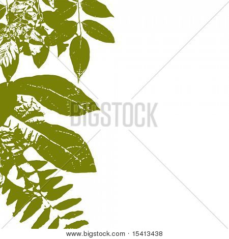 Vector Autumn Green Grunge Leaves With White Copyspace, See Jpeg Also In My Portfolio