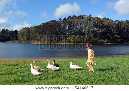 Little Girl Chasing Wild Duck
