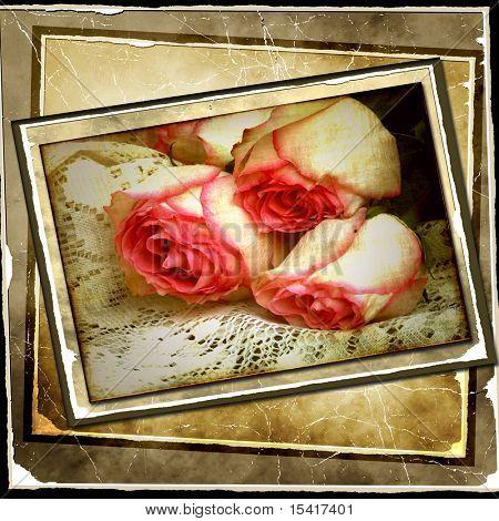 Vintage Roses Photo Art