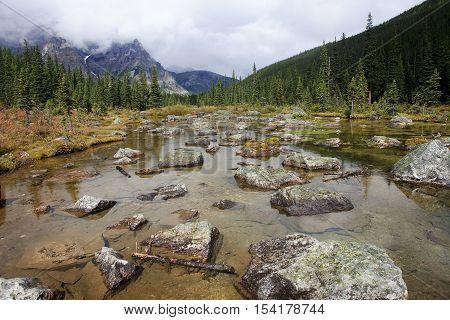 Banff National Park - View Near Consolation Lake  (near Moraine