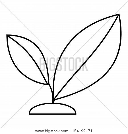 Sprout icon. Outline illustration of sprout vector icon for web