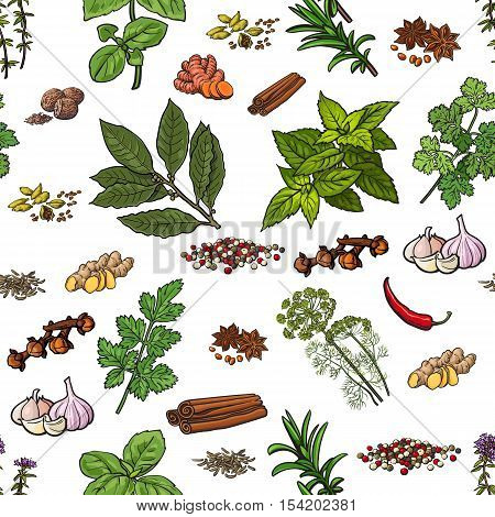 Seamless pattern of hand drawn spices and herbs, sketch style vector illustration on white background. Seamless background of spice and herb drawing, print, textile, wrapping paper design