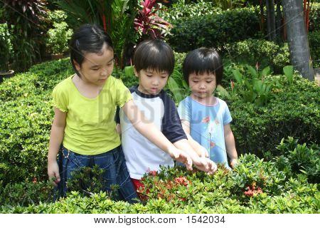 Kids At The Garden