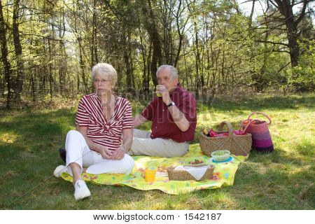 Lovely Picnic