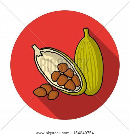 Cocoa fruit icon in flat style isolated on white background. Herb an spices symbol vector illustration.