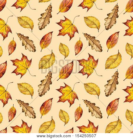 Yellow, orange and red leaves seamless watercolor pattern, watercolour autumn background of leaf oak, maple, elm, hand painted botanical illustration for textile, wrapping paper, card, invitation