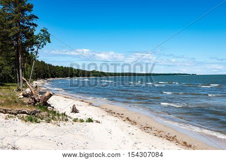 Comfortable Beach Of The Baltic Sea With Rocks And Green Vegetation