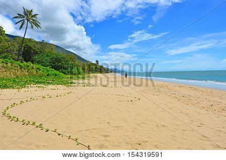 Man walks on a wild beach in the Tropical North Queensland Queensland Australia.