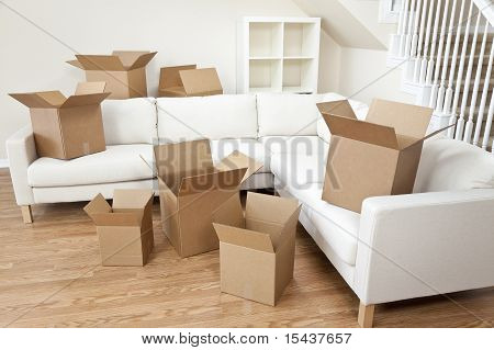 Room Of Cardboard Boxes For Moving House