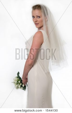 Bride In Viel