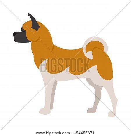 Akita breed dog and domestic animal pet and young mammal puppy, vector illustration