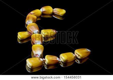 Corn kernels forming Pound sterling symbol. Corn market. Corn kernels. Selective focus and shallow Depth of field