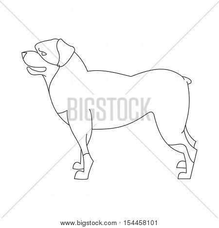 Rottweiler dog linear. Domestic pedigree cute animal, vector illustration