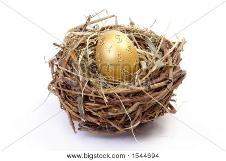 Golden Egg In Nest