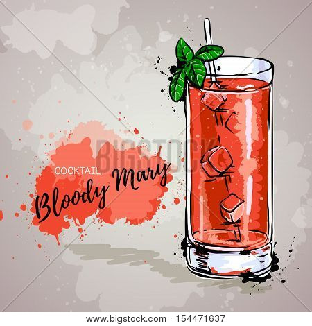 Hand drawn illustration of cocktail bloody mary.